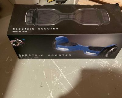 Electric scooter/hoverboard