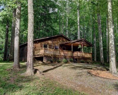 Beautiful Maple Creek cabin! Fire-pit! Babbling creek! Easy access! - Mars Hill