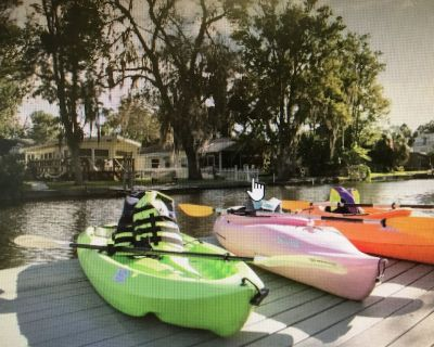 PIRATES COVE - Bikes, Kayaks, Outdoor Grill, Boat Dock, and more included...... - Weeki Wachee Gardens