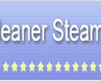 Cleaner Steamer