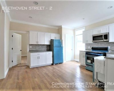 9/1 MOVE IN!! - 3BED/1BATH IN ROXBURY - WALKING DISTANCE TO THE T/FULLY UPDATED AMENITIES & PET FRIENDLY!!