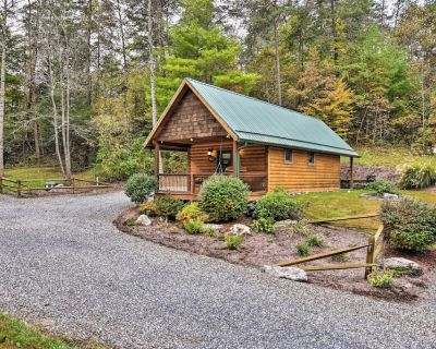 Dog-Friendly Weaverville Cabin on 17 Serene Acres - French Broad