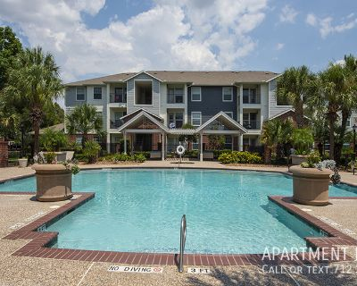 Resort style swimming pool - pet friendly apartments in Astrodome