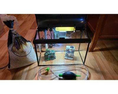 5 Gallon Fish Tank with Heater, Thermometer, Filter, Decorations, Fish Gravel. EXCELLENT CONDITION