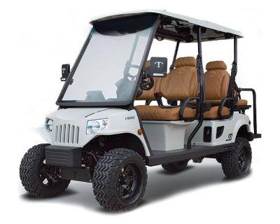 2021 Tomberlin E-Merge E4 Ghosthawk w/ Rear-Facing Seat Electric Golf Carts Canton, GA
