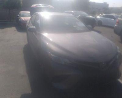 Salvage Gray 2019 Toyota Camry