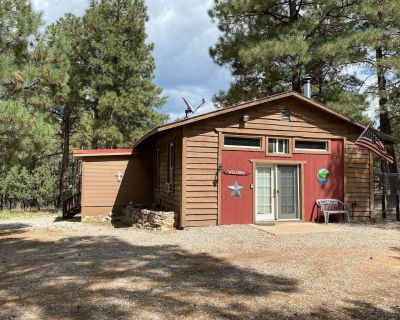 Cabin Nestled away in the Sacramento Mountains. - Timberon