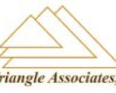 Triangle Associates Inc