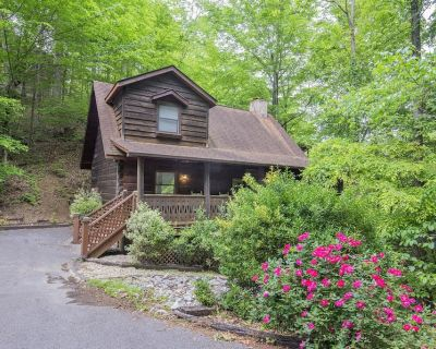 ER96 - SQUIRREL'S LEAP - GREAT LOCATION! CLOSE TO TOWN! - Pigeon Forge
