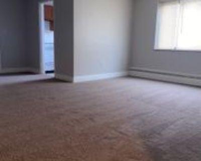 2976 VOELKEL AVENUEAPT 2 #2, Dormont, PA 15216 1 Bedroom Apartment