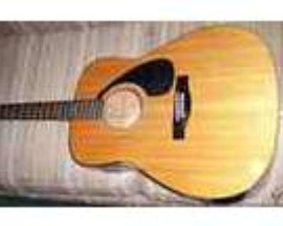 Yamaha Fg 401 Acoustic Guitar amp Case