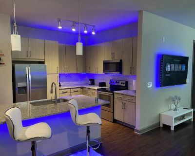 condo style 2 bed room luxury apartment - Loring Heights
