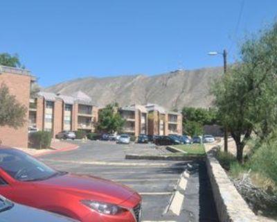 4433 N Stanton St #214, El Paso, TX 79902 2 Bedroom Apartment