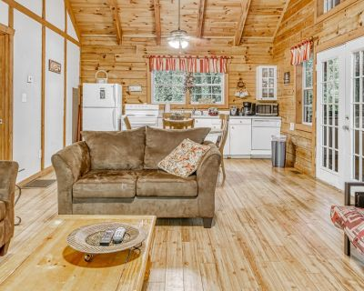 Dog-friendly and spacious Blue Ridge Mountain cabin w/ private hot tub, deck - Sautee Nacoochee