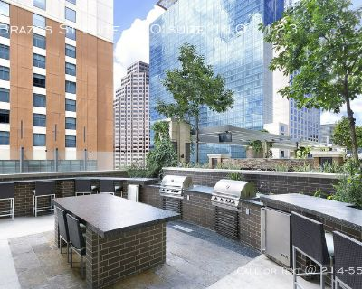 1 month free- prestige upscale living apartment in Downtown Austin