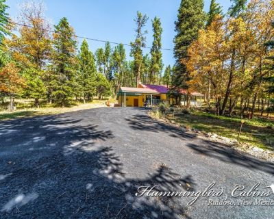 TALK ABOUT CABIN IN THE WOODS, THIS 2/2 CABIN LOCATED IN CEDAR CREEK - Alpine Cellars Village