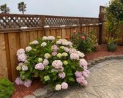 81 Camelot Ct, Daly City, CA 94015 1 Bedroom House