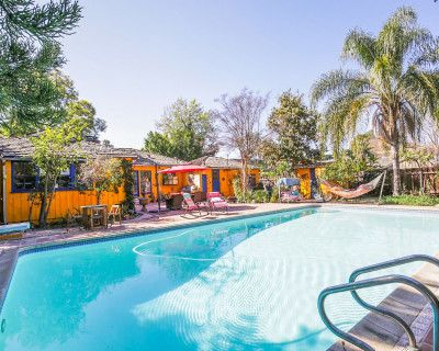 Charming Bright Backyard & Heated Pool for workshops, Swimming Puppies Therapy, classes or Luncheons, Studio City, CA