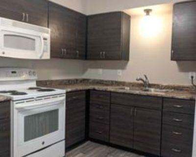 716 Marshall Avenue - 716 #716, St. Paul, MN 55104 3 Bedroom Apartment