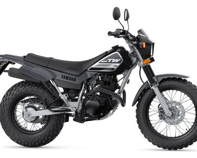 2022 Yamaha TW200 Dual Purpose Clearwater, FL