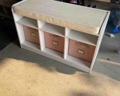 Storage bench with cushion top and storage bins