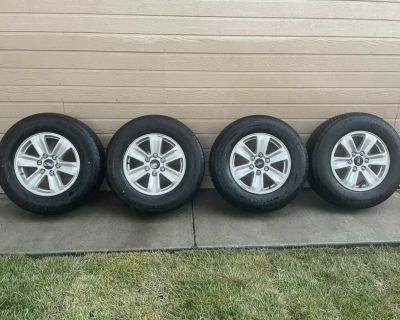 Ford Michelin tires