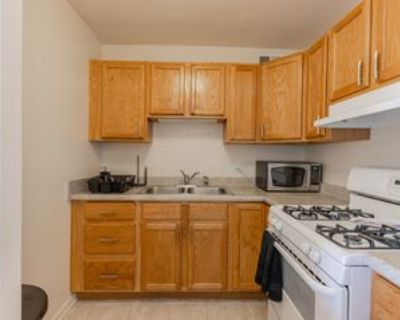 2605 South Indiana Avenue #803, Chicago, IL 60616 1 Bedroom Apartment
