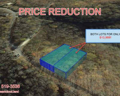 2 Lots for Sale in Smithville, TN