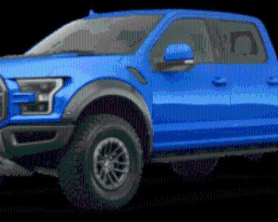 2020 Ford F-150 Raptor SuperCrew 5.5' Box 4WD