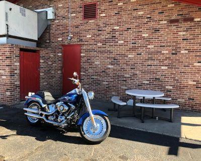 2015 Harley-Davidson FAT BOY