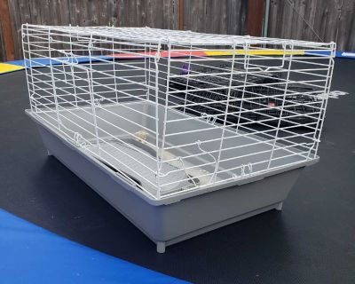 Guinea Pig /Hamster Cage