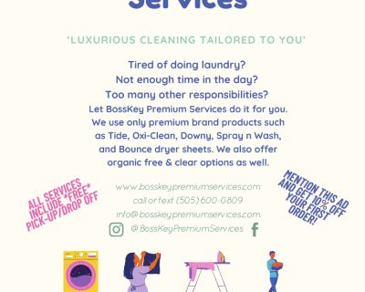 BossKey Premium Services (pickup and drop off laundry services)