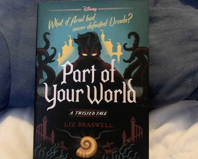 Part of Your World A Twisted Tale hardcover book by Liz Braswell