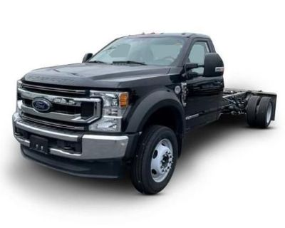 2020 FORD F550 Cab and Chassis Trucks Medium Duty
