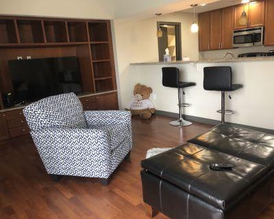 Quiet, Secure, Luxury, Cozy Apartment - Indianapolis