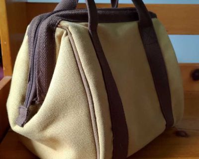 Medical bag style insulated lunch kit