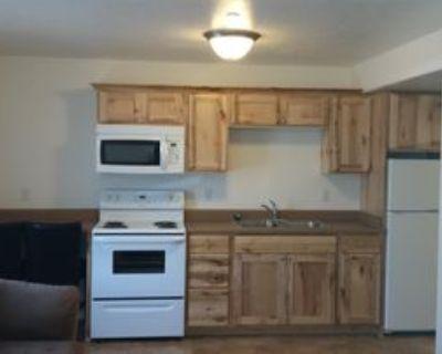 145 E Center Street - 2A #2A, Provo, UT 84606 1 Bedroom Apartment