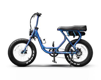 2021 Taizhou Popstar E-Bikes Mountain Edwardsville, IL
