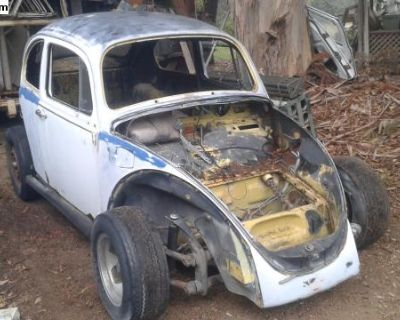 1973 standard bug parting out