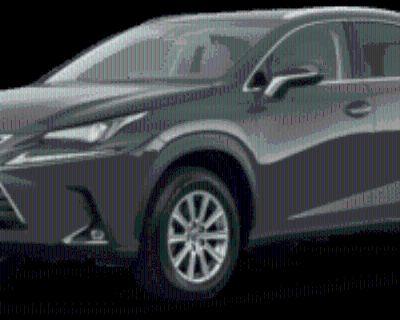 2020 Lexus NX NX 300