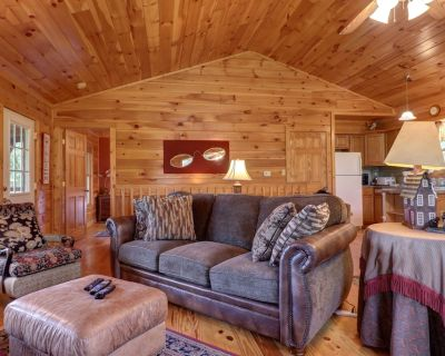 Dog-friendly mountainside cabin w/hot tub, fireplace & pool table - Pigeon Forge