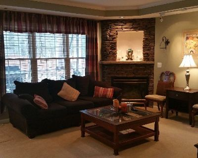 Beautiful furnished quiet terrace level apartment in Johns Creek, available March