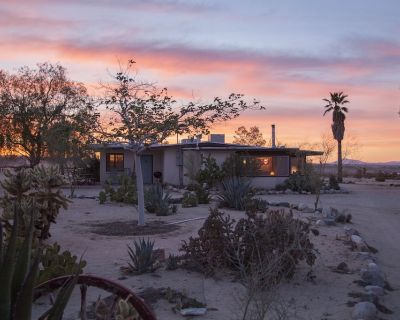Midcentury Desert Escape - Twentynine Palms
