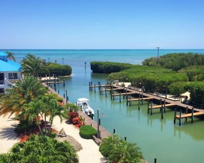 Ultimate Friends and Family Vacay! Four x 2BR/2BAs for 24 Guests, Pool, Beach - Tavernier