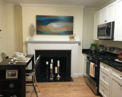 219 Commonwealth Ave, Newton, MA 02467 1 Bedroom Apartment