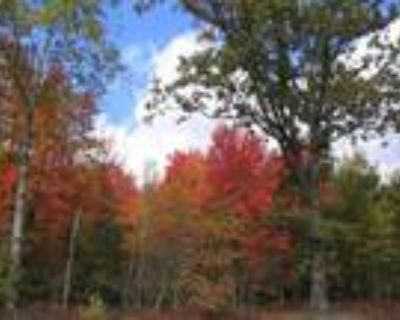 57.9 Wooded Acres