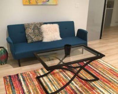Modern Inner Sunset 1 bedroom apartment