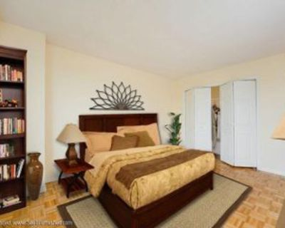 1533 Beacon St #1503, Brookline, MA 02446 1 Bedroom Apartment
