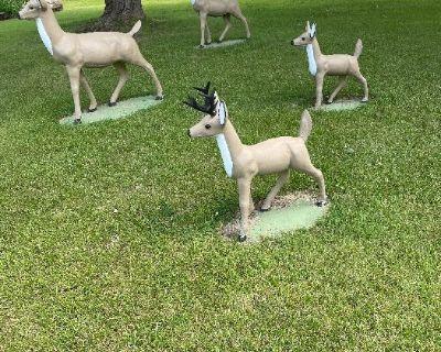 Hey Deer !! Another great Estate Sale!!