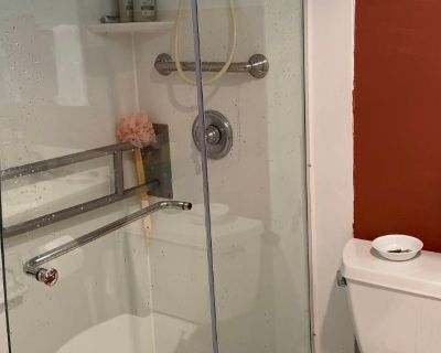 Private room with own bathroom - Silver Spring , MD 20910